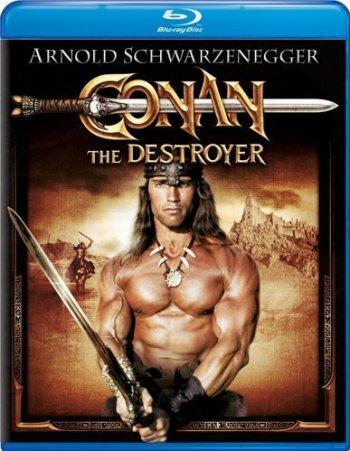 Смотреть онлайн Конан - разрушитель / Conan the Destroyer (1984)